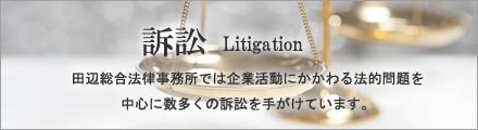 田辺総合法律事務所では企業活動にかかわる法的問題を中心に数多くの訴訟を手がけています。
